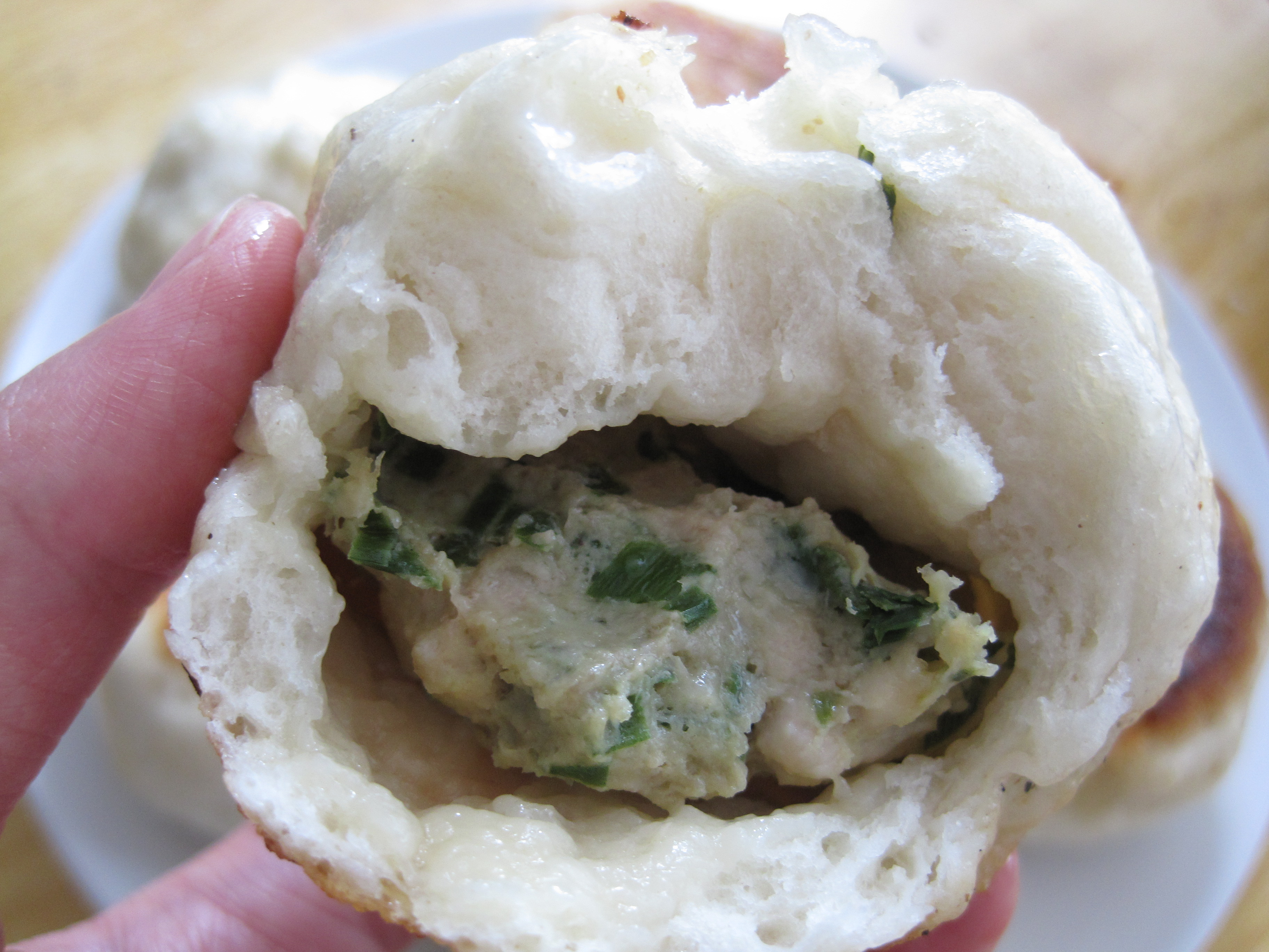 Pan fried steamed buns recipe cooking with alison then forumfinder Choice Image