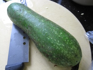Chinese hairy gourd vegetable